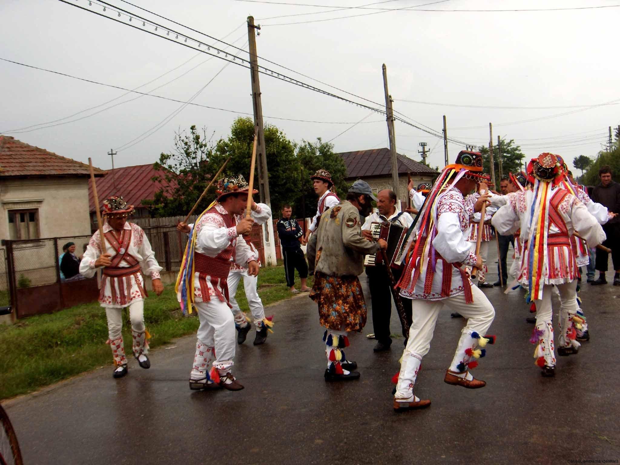 07-calus-joc-in-drum-stolnici-2008