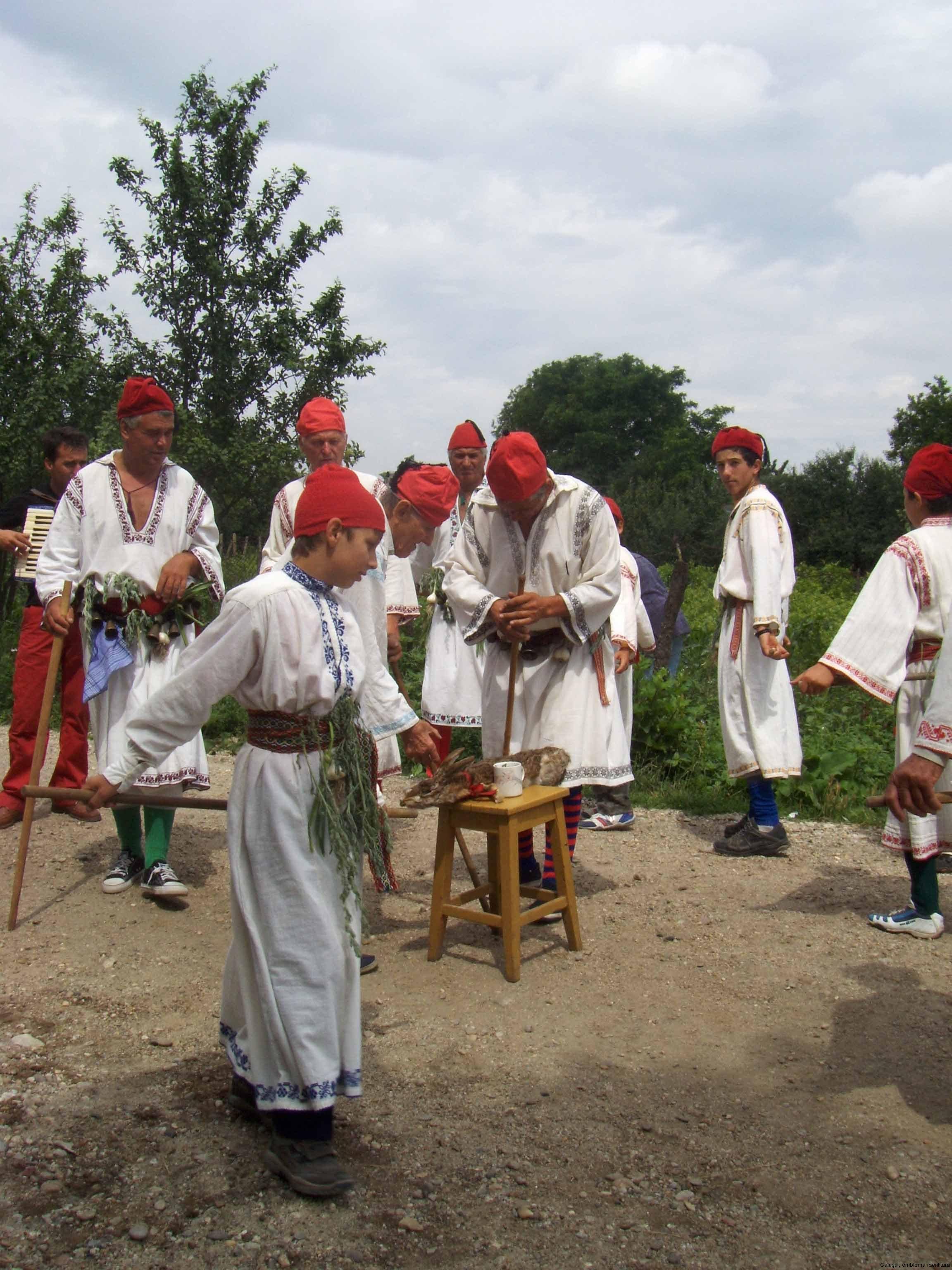 10-calus-Pantomima-rituala-doborarea-calusarului-Giurgita-2008